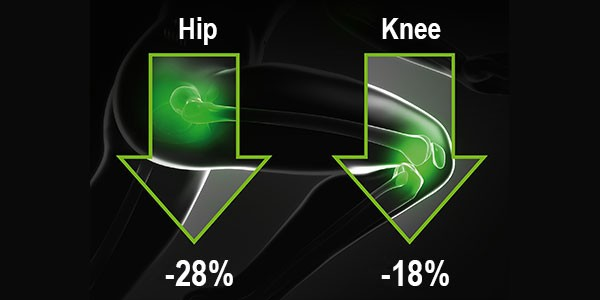 PALACOS R+G with lower revision rates: -25% for hip and -13% for knee