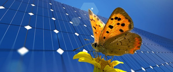 Solutions for Renewable Energies